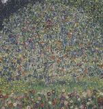 Gustav Klimt - Apple small 98 x 98 (do rámu)